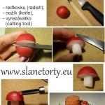 muchotravka redkovka